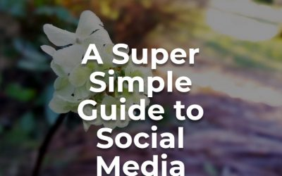 A Super Simple Guide To Social Media